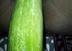 Desi wife wearing down cucumber