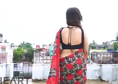 Hawt Bhabhi in Saree showing overstuff - Punt 4